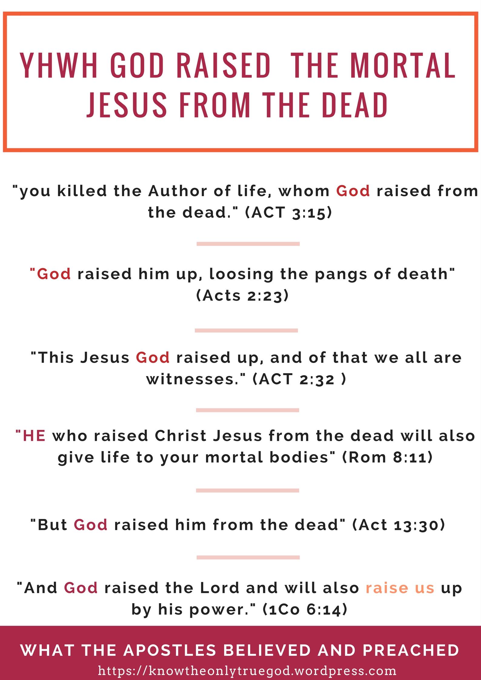 god raised jesus from the dead mortal apostle resurrection